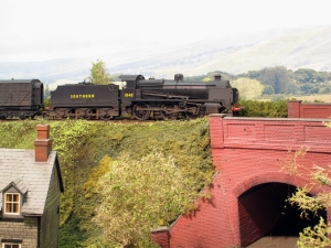 A final close up of 1848 at home amongst Rob's excellent scenic work and very effective backscene.