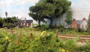 A further view of the embankment and its flora along with some of the tress on Fisherton Sarum